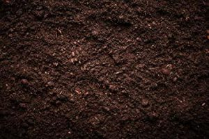 Soil & Composts